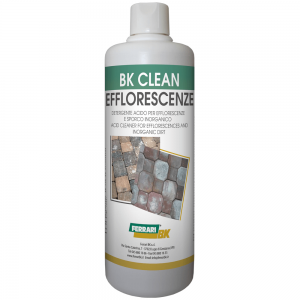 BK Clean EFFLORESCENZE (1 lt)